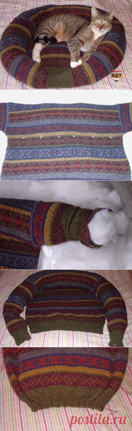 Лежак для кота из старого свитера — Планета и человек