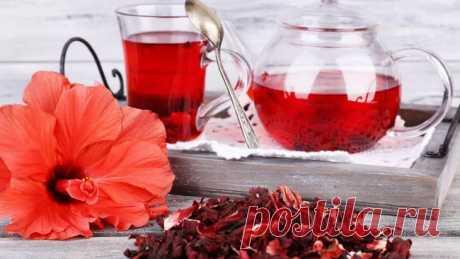 Как правильно заваривать чай каркаде - советы и способы приготовления