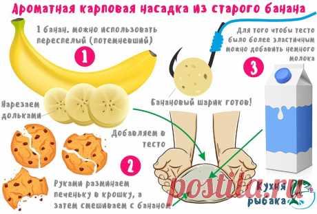 Бюджетная карповая насадка из одного банана | Кухня рыбака | Яндекс Дзен