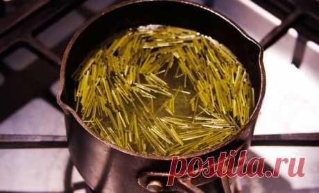 Хвойный квас—чистим сосуды от холестерина. | Дачные советы | Яндекс Дзен