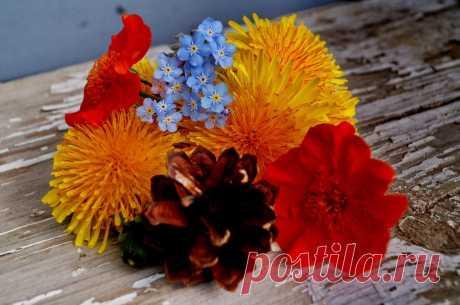 на даче,цветы,лето