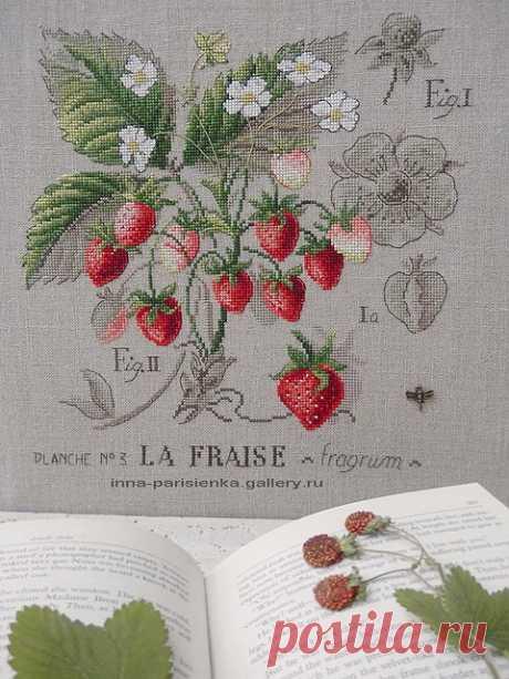 (1) Gallery.ru / Фото #10 - Etudes botaniques. Ягоды - inna-parisienka