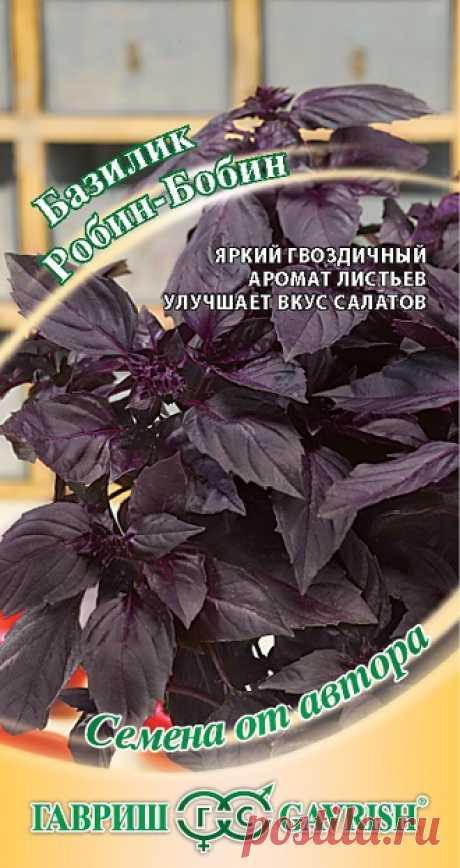 """Базилик """"Робин-Бобин"""", фиолетовый"""