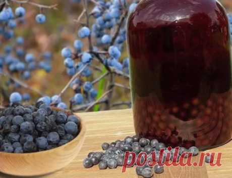Вино из терна в домашних условиях: рецепты классический, простой, с дрожжами - Onwomen.ru