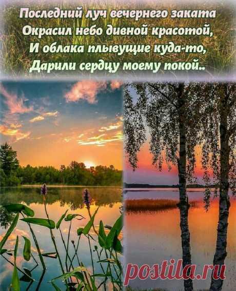 Добрый вечер!