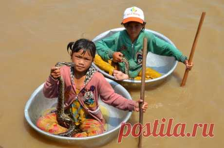 ""\""""Life on water"""" """"Children from the floating village on the Lake Tonle Sap in Cambodia. In basins float in school and back. Suggest to be photographed with snakes for dollar. So life of Khmers looks"""", – Summer Irina comments on the picture. Other pictures: nat-geo.ru/photo/user/47184""460|305|?|en|2|242af44bf2e169c60d0980e86a4ac46f|False|UNLIKELY|0.2901492714881897