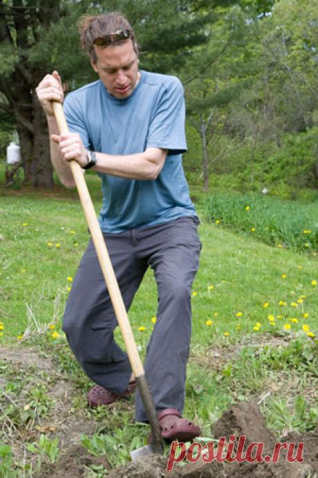 Хватит копать грядки! 5 причин облегчить себе жизнь на даче