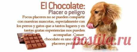 un chocolate por un beso - Buscar con Google