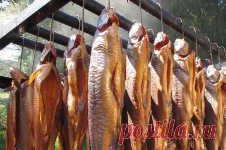 Ольха, соль и немного терпения. Секреты копчения рыбы на даче и пикнике  В промышленном производстве для придания тушкам специфического вкуса используют химический состав - «жидкий дым». Поэтому лучше коптить рыбу самостоятельно, чтобы она обработалась за счёт перегорания…