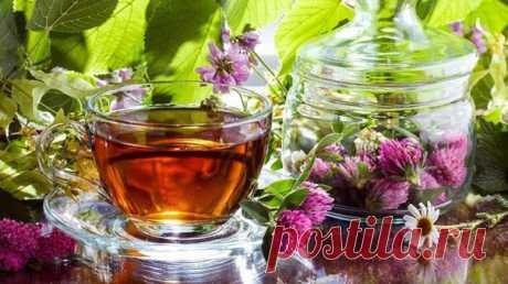 *Целительная сила травяных чаев*   Старые добрые травяные чаи... Именно их пили наши предки ещё каких-то 500 лет назад, до того как настоящий чай появился в нашей стране. Они заваривали душистые травы, кусочки кореньев, цветки и ягоды чтобы снять усталость, прибавить силы и исцелить болячки.   И действительно, современные исследования показали, что травяные чаи ускоряют метаболизм, очищают организм, а помимо этого – они необычайно ароматны и вкусны.  Показать полностью…