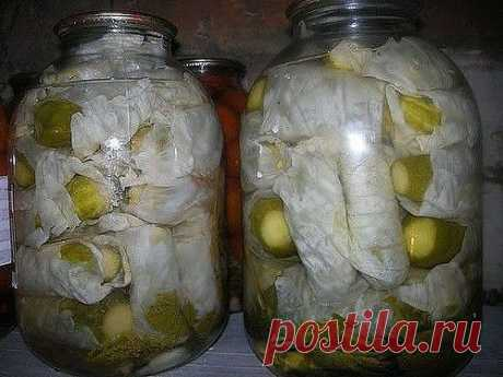 Рецепт на заметку: огурцы в капустных листьях | 6 соток