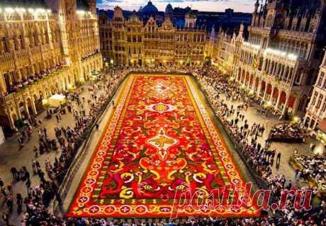 Ковер из цветов в Брюсселе, Бельгия