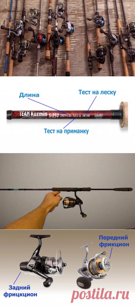 Как выбрать спиннинг начинающему рыболову | Охота и Рыбалка | Яндекс Дзен