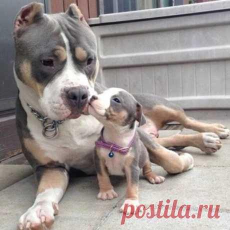 С мамой...)