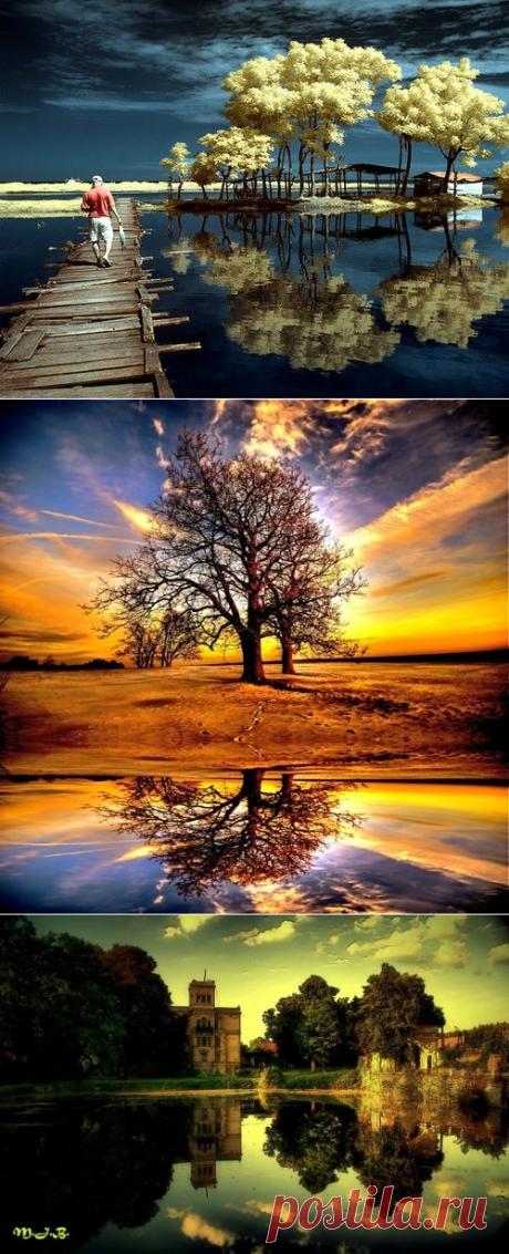Свет мой зеркальце скажи - 50 примеров использования отражения. | Lightroom.ru