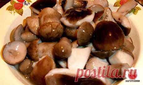 Маринад для грибов (Опят, маслят, белых и т. д. )