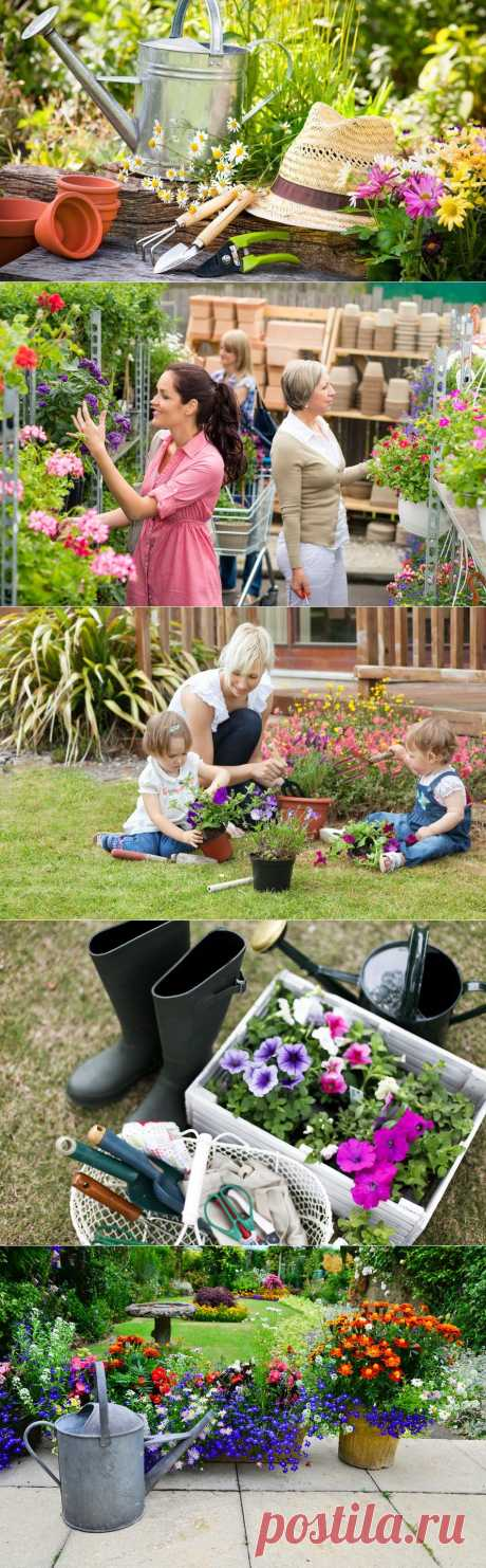 10 актуальных вопросов про садовый участок | ВСЁ ДЛЯ ДОМА