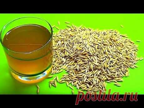 Treatment of a liver oats broth. How to prepare oats broth for the liver.