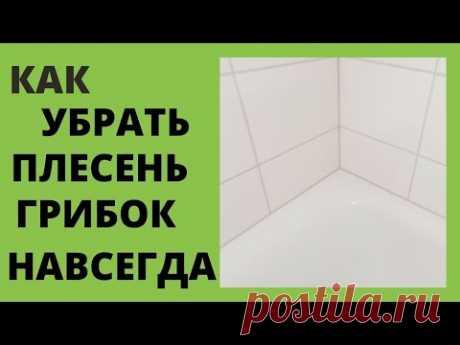 Как УБРАТЬ ПЛЕСЕНЬ ГРИБОК в ванной НАВСЕГДА. УНИКАЛЬНЫЙ СПОСОБ!