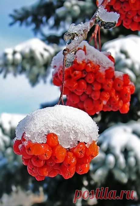 Нужно учиться радоваться любому времени года, любому дню, любой погоде.