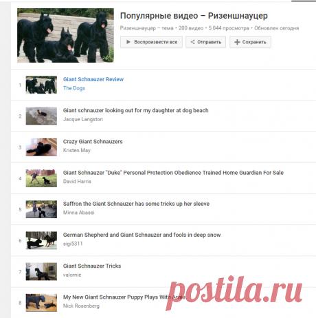Los vídeos populares – Rizenshnautser - YouTube