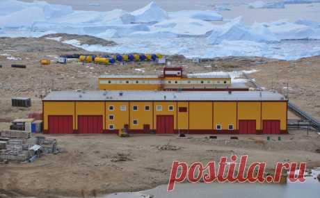 На российских станциях в Антарктиде ввели карантин :: Общество :: РБК