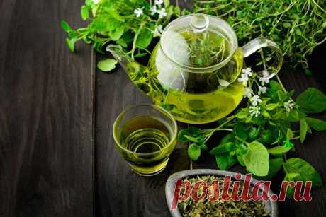 Можно ли пить зеленый чай на ночь перед сном