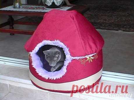 Домик-кроватка для кошки — Сделай сам, идеи для творчества - DIY Ideas