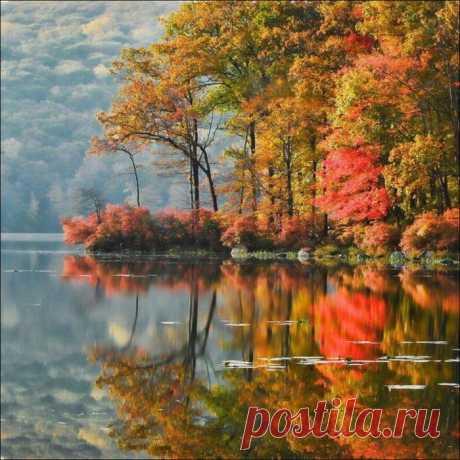 осень фото - Поиск в Google