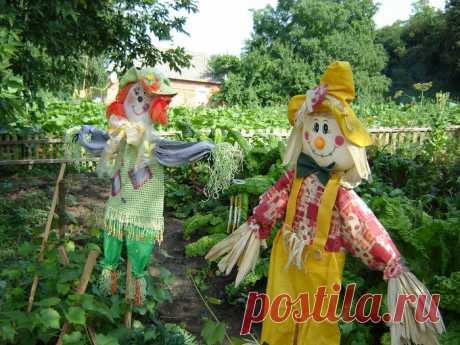 "Scarecrow garden the hands (master class)\"" Female World"