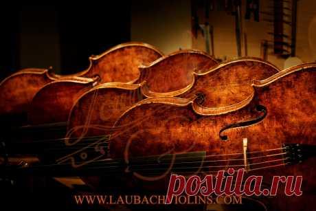 Laubach Antique look Master Cello - Laubach violin workshop