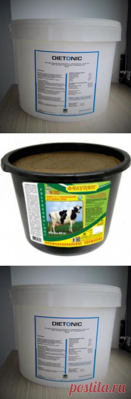 Использование комплексных кормовых добавок в период повышенной стрессовой нагрузки - БиоКорова