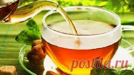 Какой чай самый полезный - Медицина 2.0