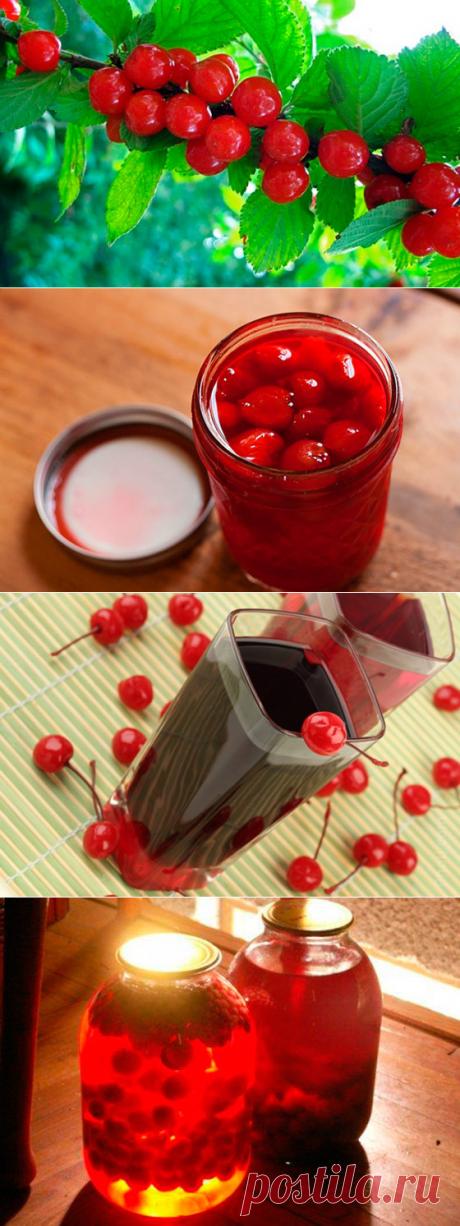 Заготовки из войлочной вишни: рецепты варенья, вина и компотов