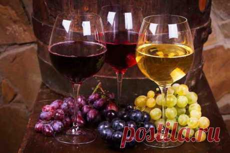 14 рецептов домашнего вина из винограда | О Фазенде. Загородная жизнь | Яндекс Дзен