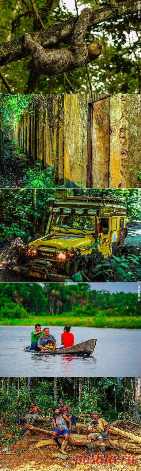 Край чудес: Гвиана, Гайана, Суринам / Туристический спутник