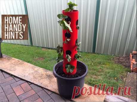 Использование ПВХ-труб для сада и огорода / Я - суперпупер