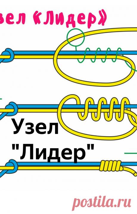 "Узел ""Лидер"" | Кухня рыбака | Яндекс Дзен"