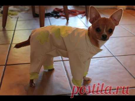 Одежда для собак. Как сшить комбинезон. \ DIY. Sewing Pet clothing ( Sew a rain-coat.)