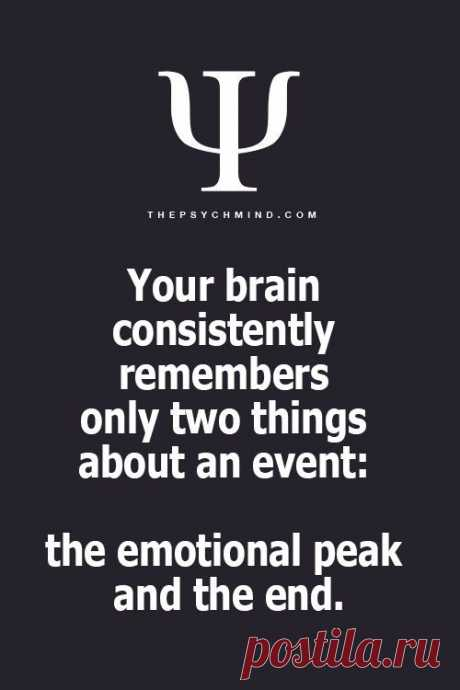 Your brain...