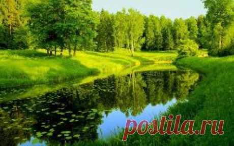 фото природы красивые скачать бесплатно - 268 тыс. картинок. Поиск Mail.Ru