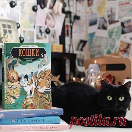 Тот случай, когда вместе с ребёнком из комикса узнаёшь море неизвестных кошачьих фактов 🐾 Самым интересным для меня оказался раздел о том, как работает генотип и фенотип и как они влияют на отношения с людьми и поведение кошки. А вы знали, что: • кошки редко мяукают друг на друга, мяуканье преимущественно направлено на людей. Может быть потому, что люди не умеют читать запахи, как кошки. • глаза кошки не могут сфокусироваться на предметах, находящихся на расстоянии ближе 30 см. Кошки…