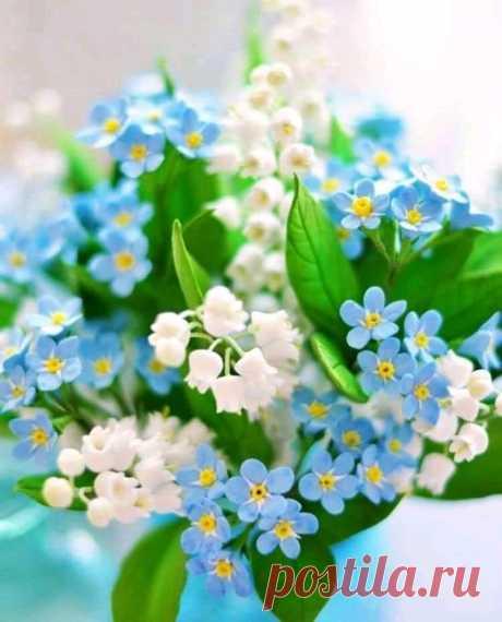 Просто хочется Весны...... без болезней .. без войны......