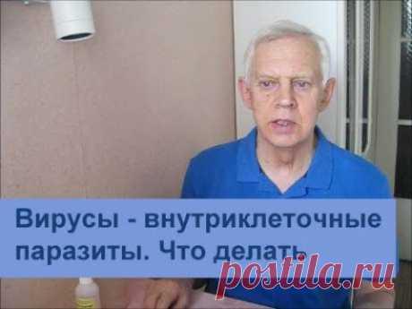 Вирус - внутриклеточный паразит. Что делать. Alexander Zakurdaev