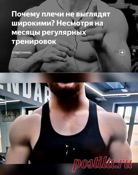 Почему плечи не выглядят широкими? Несмотря на месяцы регулярных тренировок | fitnechannel | Яндекс Дзен