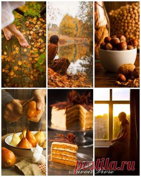 Осеньювсегдалегкодумается, и вечность, забыв время и пространство, теряет напряжённость мысли, и что-то тихое и печальное льётся в душу... (с)
