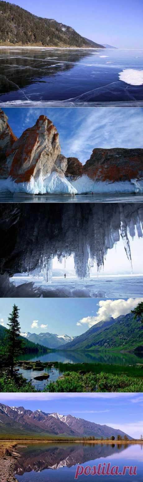 (+1) тема - Наш красавец Байкал | Среда обитания