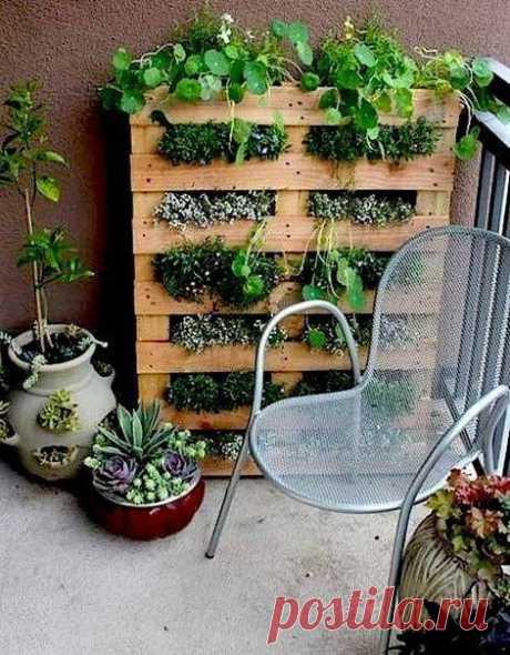 Как можно использовать поддоны в саду — DIYIdeas