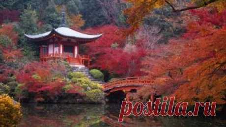 Японский пейзаж в розовых тонах .