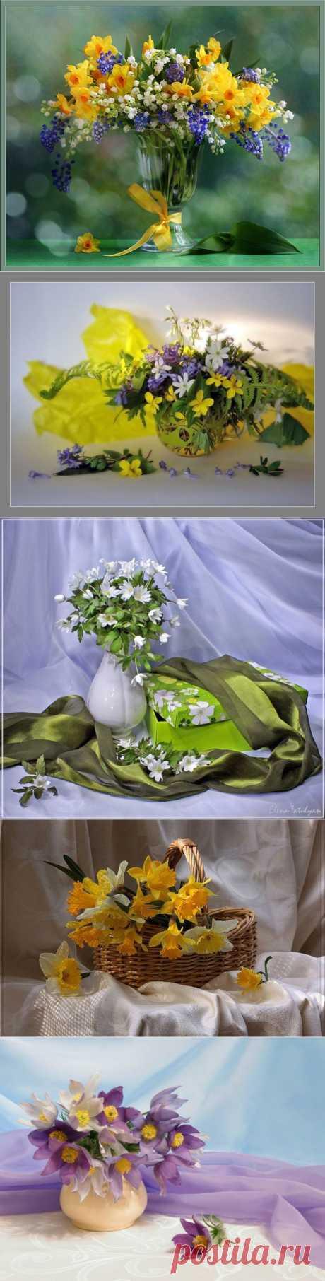 Натюрморты Весенние цветы.